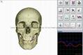 塔特隆獵人NLS系統4025生物共振健康掃描和治療 2