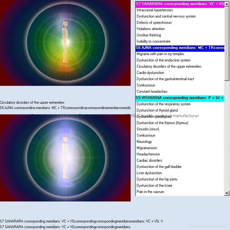 2014年生物共振掃描儀8D LRIS NLS IRIS- NLS量子健康分析儀機 7