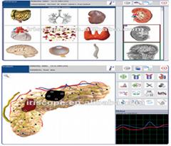 多語言高精度塔特隆NLS4025獵人身體分析儀