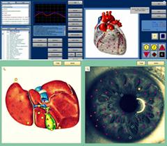 一个OEM的设计! 2015年趋势机8D NLS全身健康分析仪