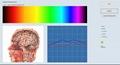 2019年矢量專業8d nls lris生物共振身體健康分析儀 6