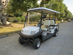 Electric golf cart EG204AK