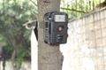 HD 720P 户外打猎相机 7