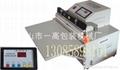 450型外抽式真空充气包装机/