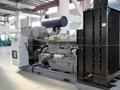 diesel generator with Perkins EPA