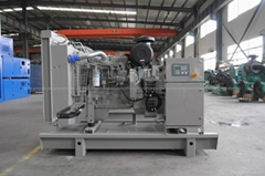 diesel generator sets with FPT Iveco engine