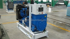 30kva/24kw diesel generator with Perkins engine 1103A-33G