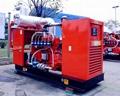 natural gas generator 250kva/200kw,Cummins engine HGNT14,with open type,60hz