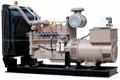 natural gas generator with Cummins engine
