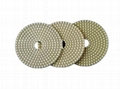 3 Step Wet Diamond Polishing Pads for granite