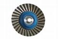 Diamond Abrasive Flap Disc  3
