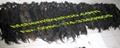 virgin (remy,natural) human hair