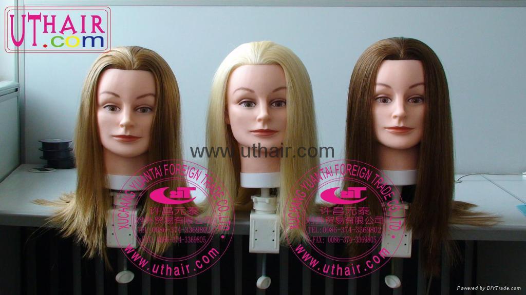 100% human hair weaving,remy hair extension,synthetic hair,virgin hair,wig,clip 2