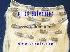 clips in extensions