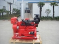 Fire Pump Diesel Engine for Australian