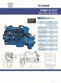 TD BRAND 200Hp Water Cooled Inboard