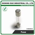 F-0632G-02 2A 6x30 Glass Tube Ferrule