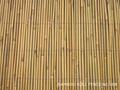bamboo fence,bamboo fencing,bamboo
