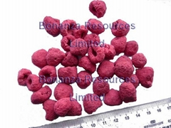 new crop Certified dried berries snacks Freeze Dried Healthy Fruit -Raspberry