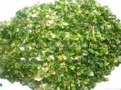 Dehydrated Spring Onion Green Onion