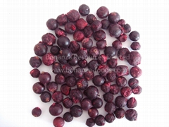 New Arrival Certified  Freeze Dried Fruit Snack- healthy foods Black Currant