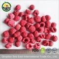 Heathy dried berries snacks Freeze Dried