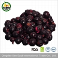 New Arrival Certified  Freeze Dried Fruit Snack- healthy foods Black Currant 1