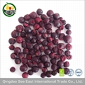 New Arrival Certified  Freeze Dried Fruit Snack- healthy foods Black Currant 2
