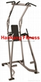 Hammer Strength,fitness,gym equipment,bodybuilding,Chin / Dip / Leg Rais-HS-4041