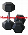 NEW Hex Rubber Coated Dumbbell(HD-003)