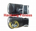 fitness,body building,hammer strength,Professional Boxing Glove (HQ-001) 1