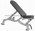 gym equipment,fitness,body building