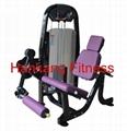 body building,hammer strength,home gym