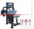 protraining equipme.fitness.hammer strength.Arm Extension-PT-805
