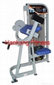 gym equipment,fitness,body building,hammer strength,Biceps Curl (PT-502)