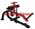 body-building machine.Seated Calf