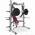 Decline Chest Press - DF-6002