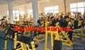 fitness,fitness equipment,Hammer Strength Machin,Iso-Lateral Bench Press-HS-3001 4