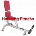 home gym,fitness,hammer strength,Utility Bench-75 Degree (HK-1048)