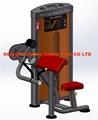Arm Curl Machine-DF-8003