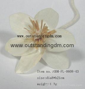 eco-friendly white sola flower