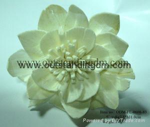 white sola flower for gift set