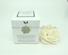 sola flower in nice packaging box