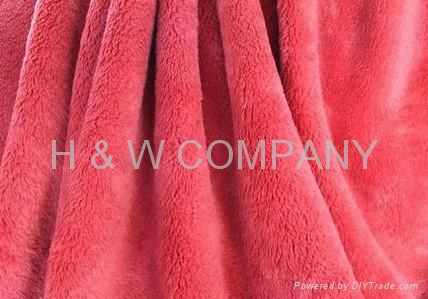 Coral Fleece Blanket 5