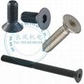 Flat Head socket cap screws
