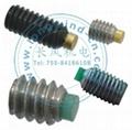Soft tipped socket set screws