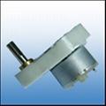 Micro DC Gear Motor(001)