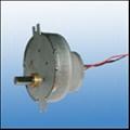 Micro DC Gear Motor(002)