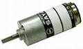 Micro DC Gear Motor(012)