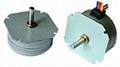 Micro Stepping Motor(008)